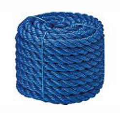 Monofilament twisted ropes